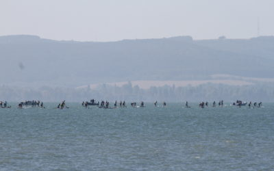ICF World SUP Championships –  DAY 2 TESTS YOUR ENDURANCE!